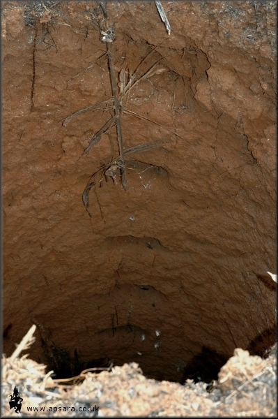 Foot holes are dug into the sides of the pit. The  whole is too small for a ladder to be used.