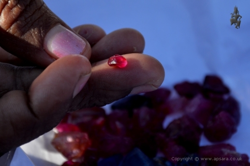 A parcel of rough rubies being offered at Pan-Ma.