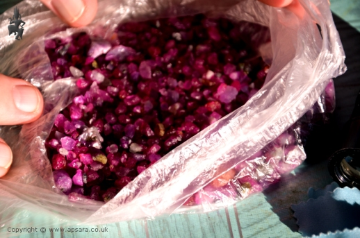 A bag or ruby crystals at the Panchan Gem Market.
